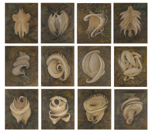 elizabeth-reed-gifts-from-the-sea-composite