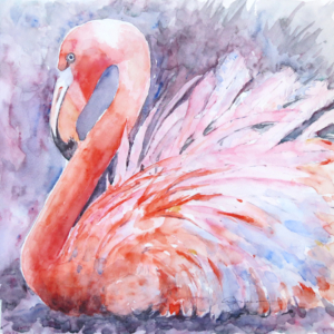 Claudia-Hafner Flamingo-