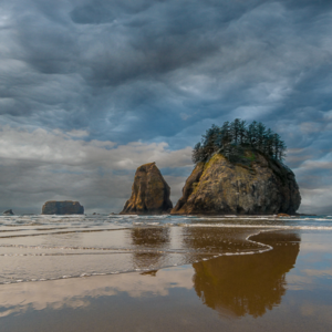 Juan Prieto Oregon Beach 20x20
