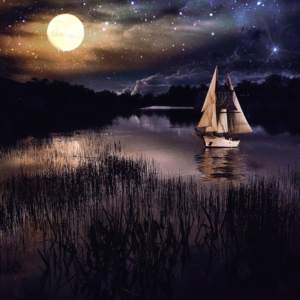 Shelly Benjamin Moonlight Cruise 12x12